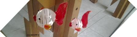 Pesci colorati