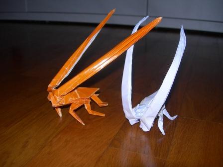 Origami Scarafaggio