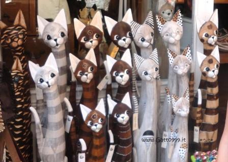 Gatti... Cats...