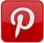 Gatto NineNineNine on Pinterest
