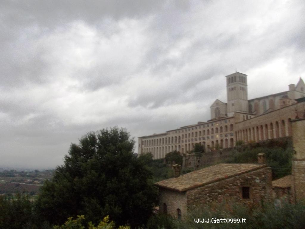 Assisi (Italy)