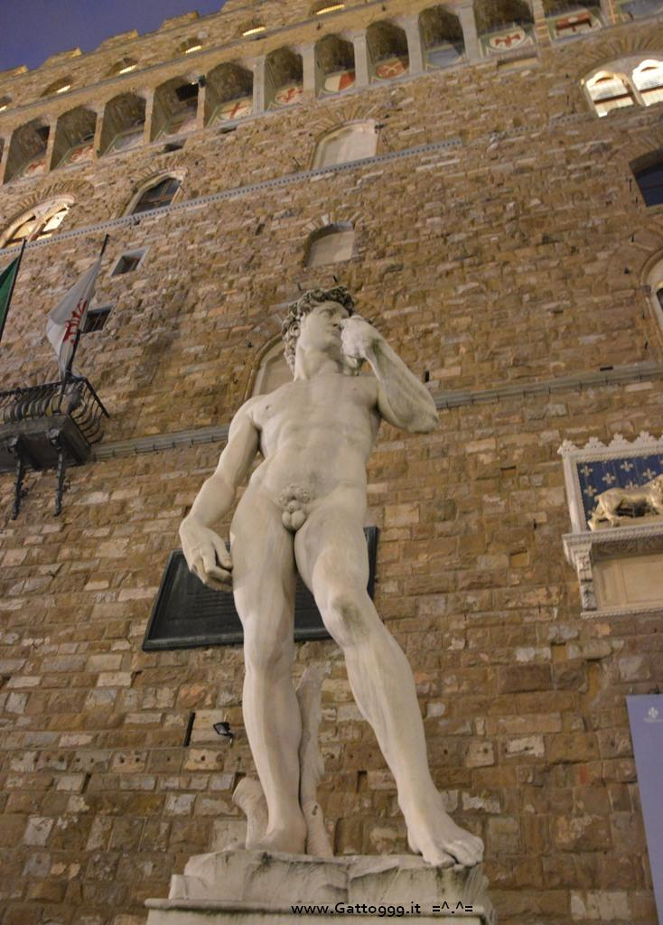 David di Michelangelo by night