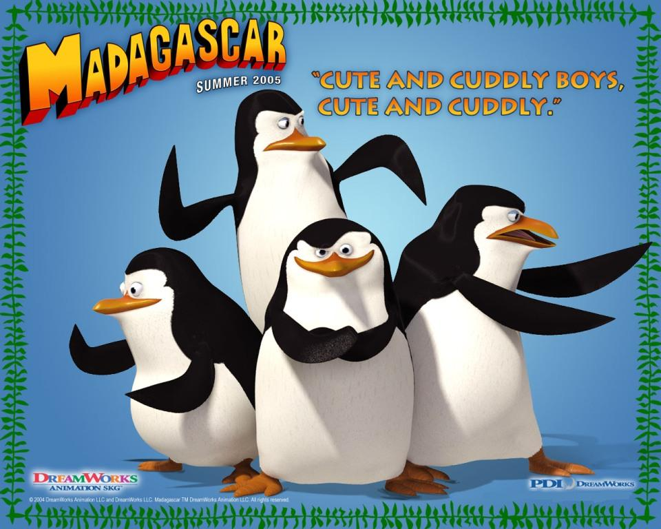 Madagascar - Pinguini - Pinguins