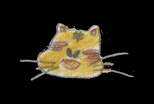 Cat disegni gatti - Gatto disegno modello di gatto ...