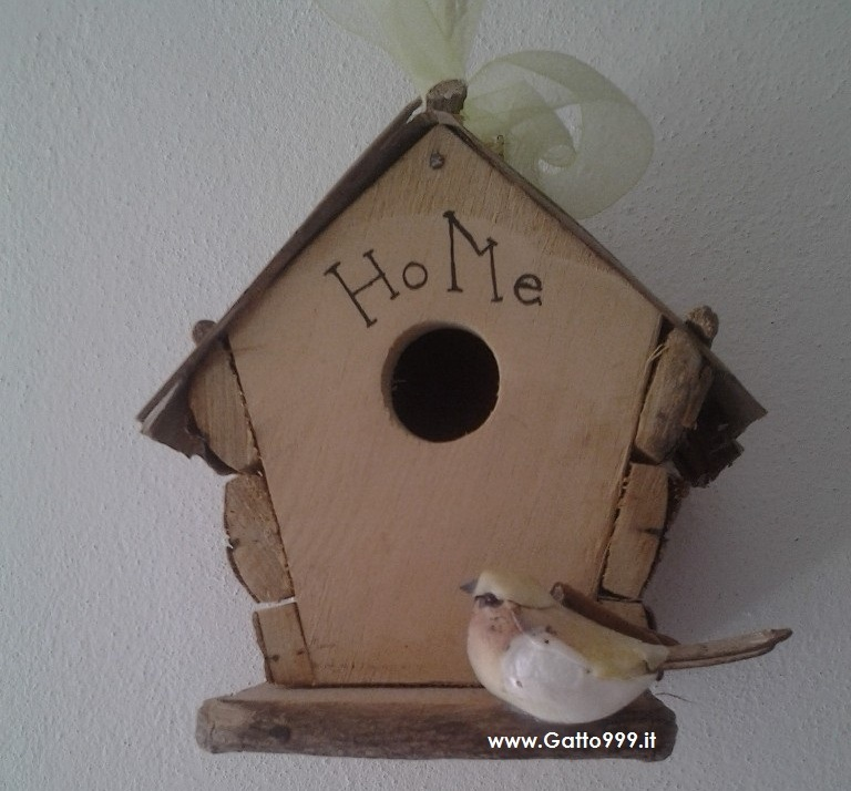 Cat Casa Dolce Casa Home Sweet Home