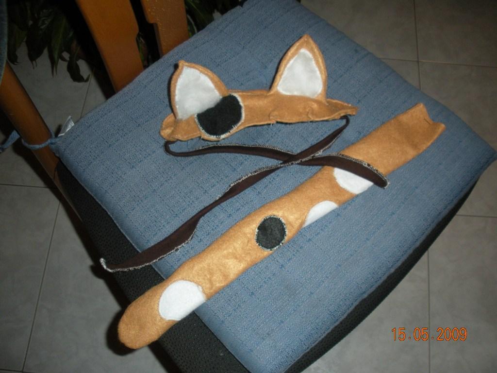Cat carnevale quale personaggio interpretare che for La coda del gatto
