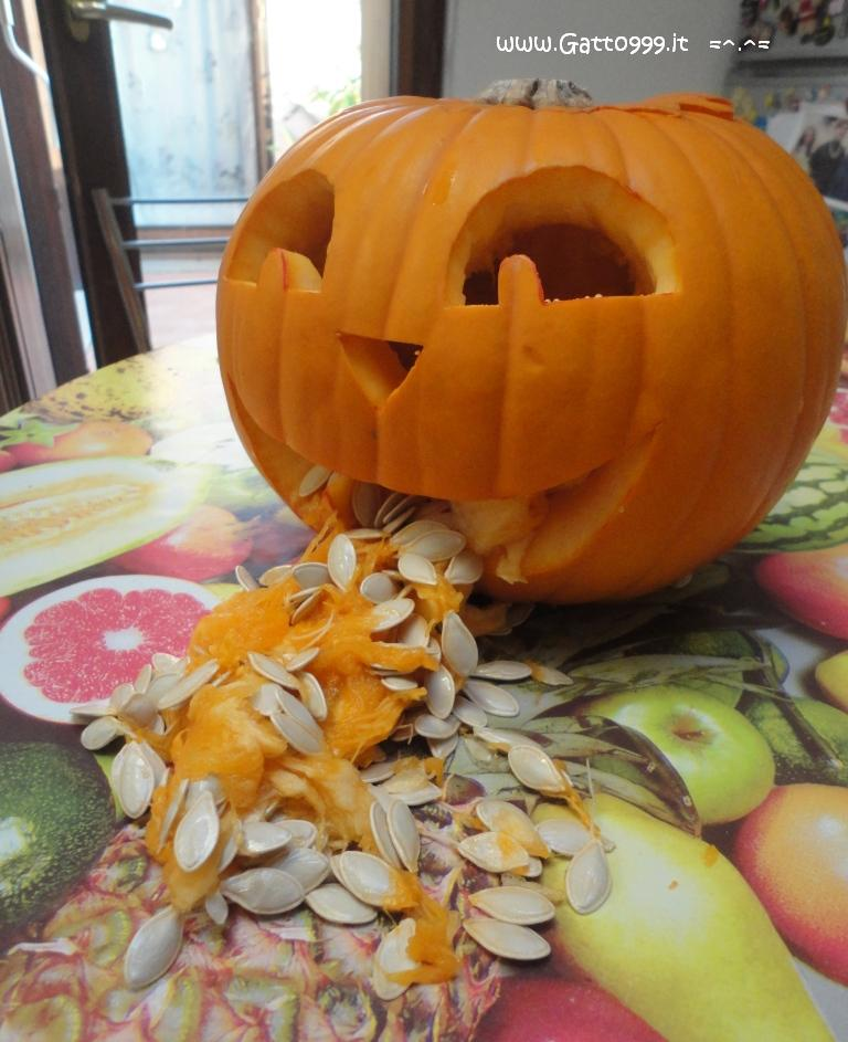 Zucche Di Halloween Terrificanti.Cat Come Fare Una Zucca Di Halloween