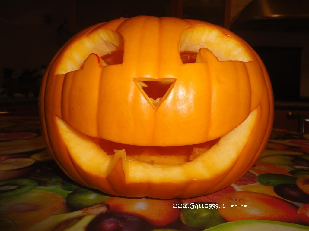 Immagine Zucca Di Halloween 94.Cat Come Fare Una Zucca Di Halloween