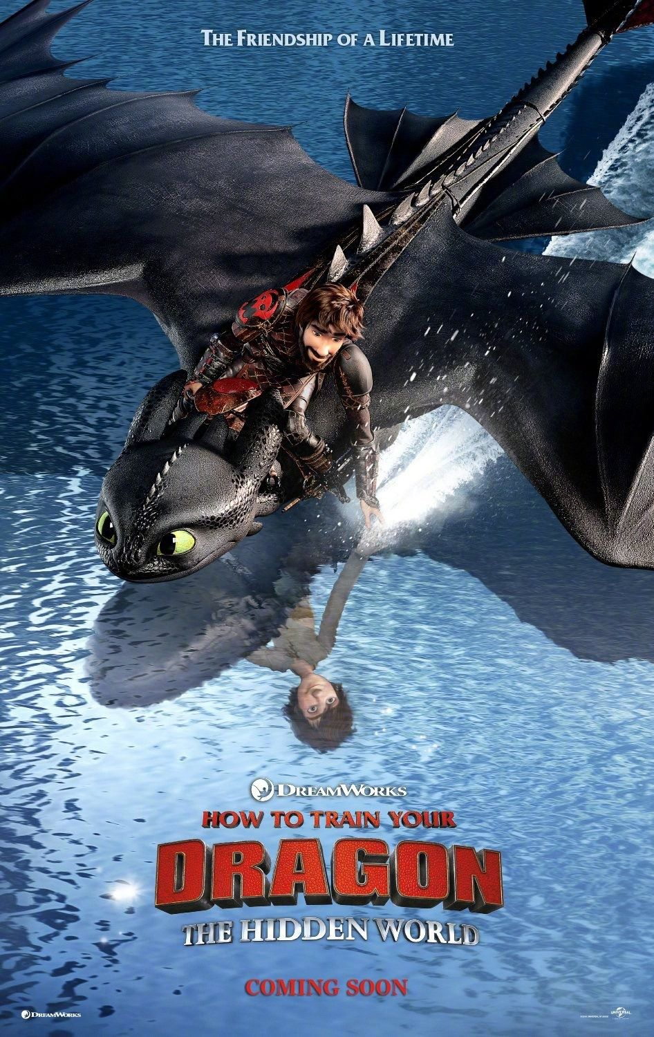 Dragon Trainer 3 - How to Train Your Dragon the Hidden World (2019)