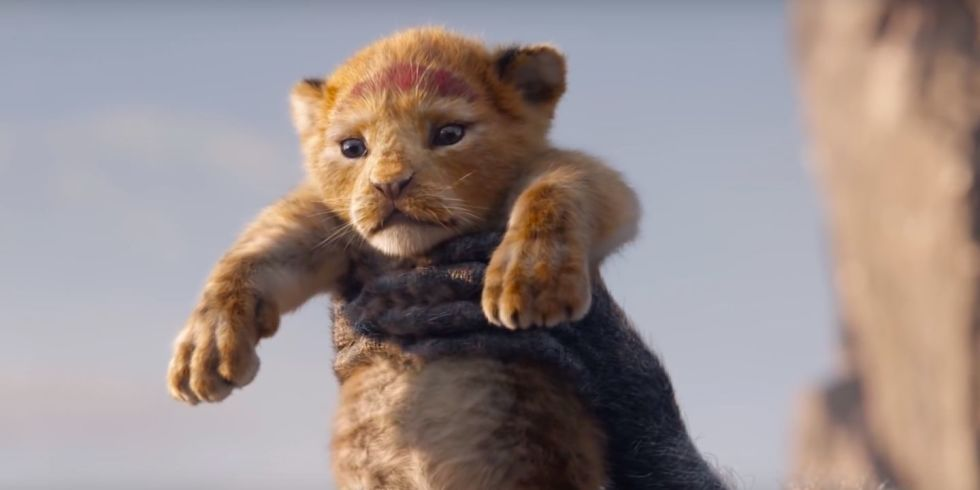 The Lion King (live action 2019) - young jeune giovane