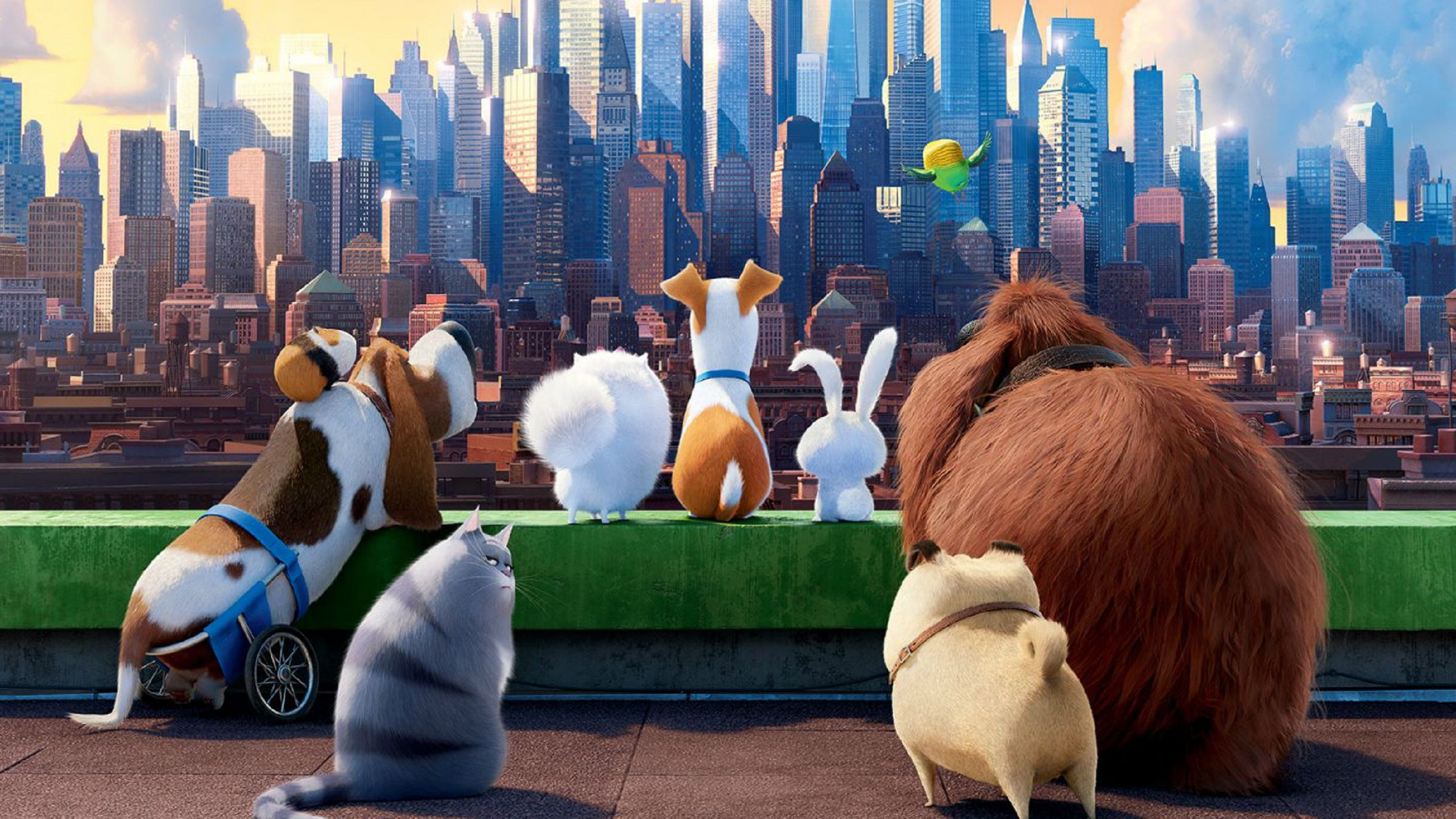 The Secret Life of Pets 2 (2019) - skyscrapers