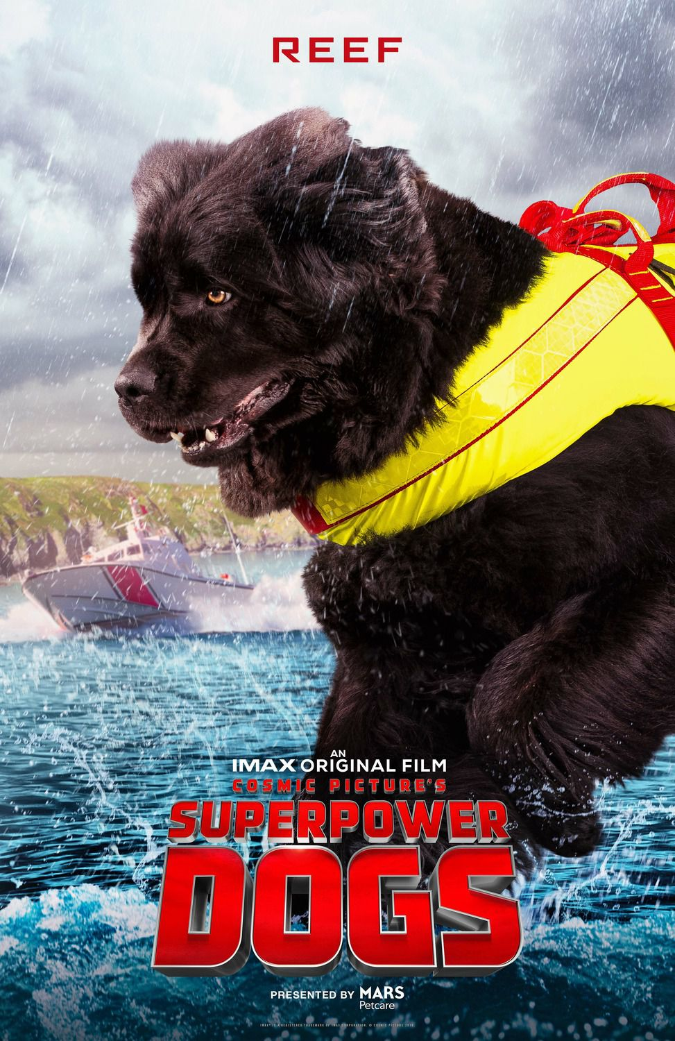 Superpower Dogs: Reef