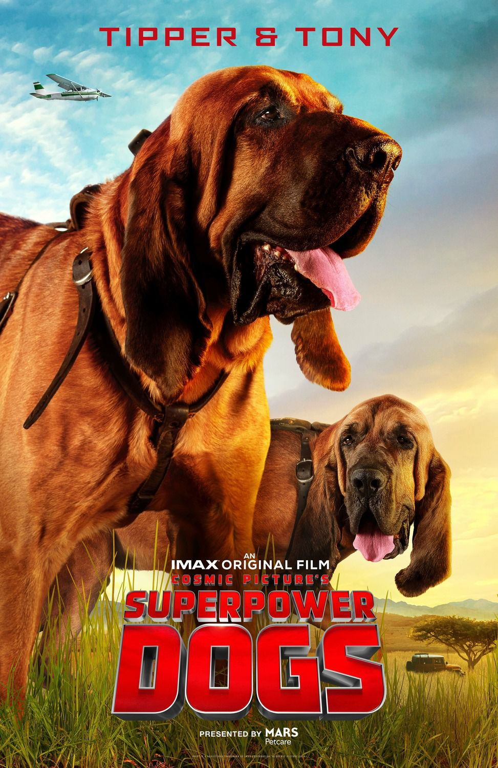 Superpower Dogs: Tipper and Tony