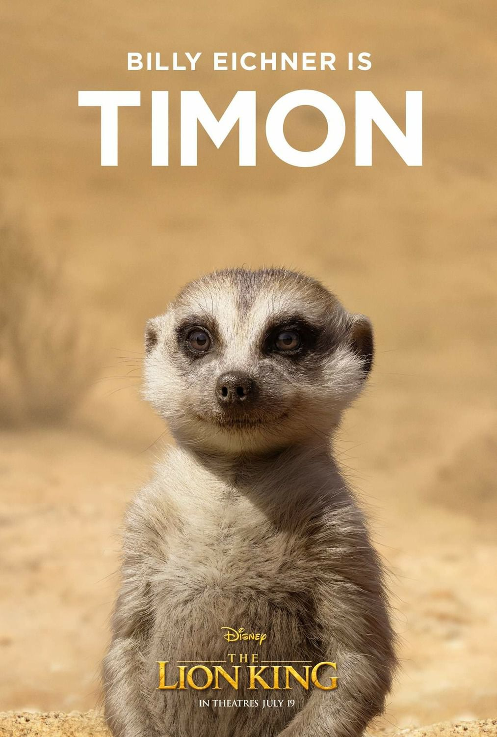 Billy Eichner is Timon