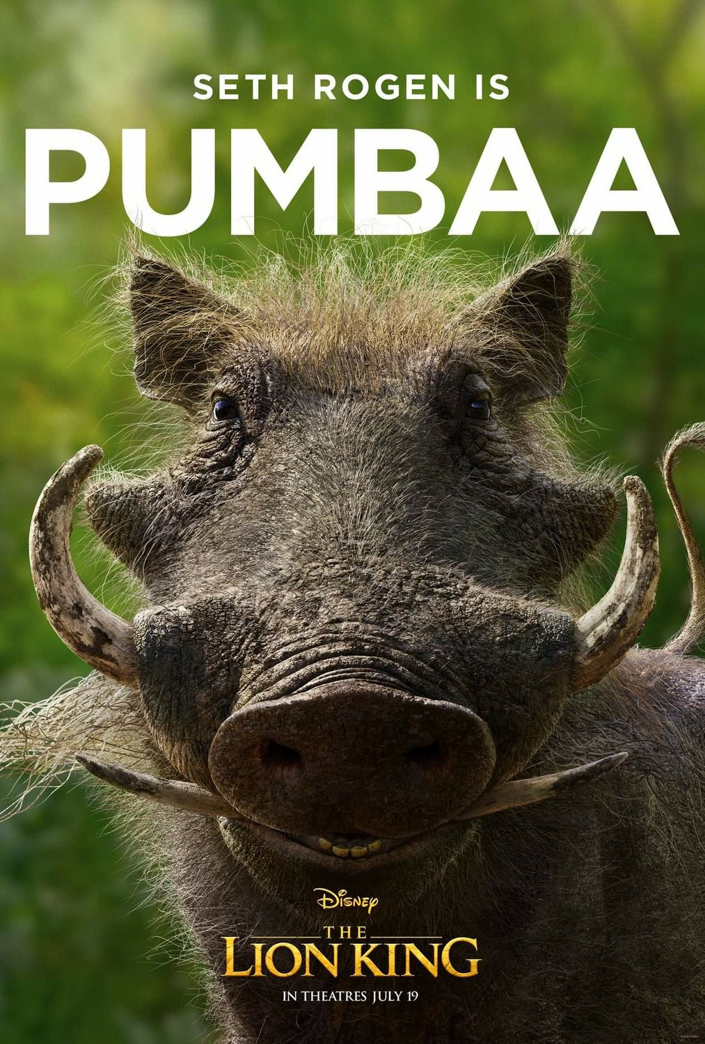 Seth Rogen is Pumbaa