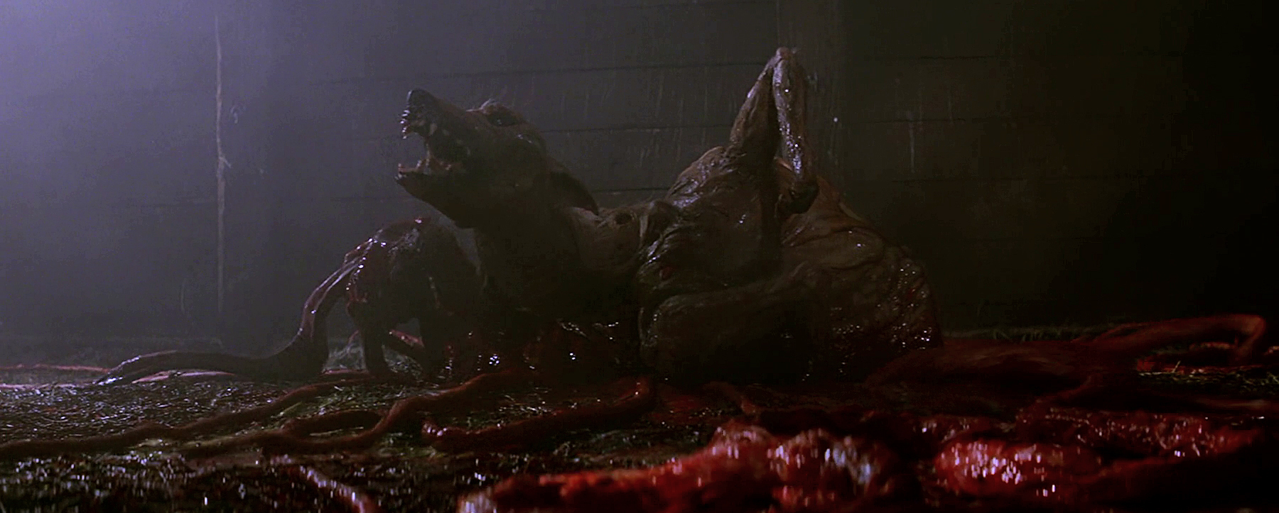 The Thing 1982 scene alien dog