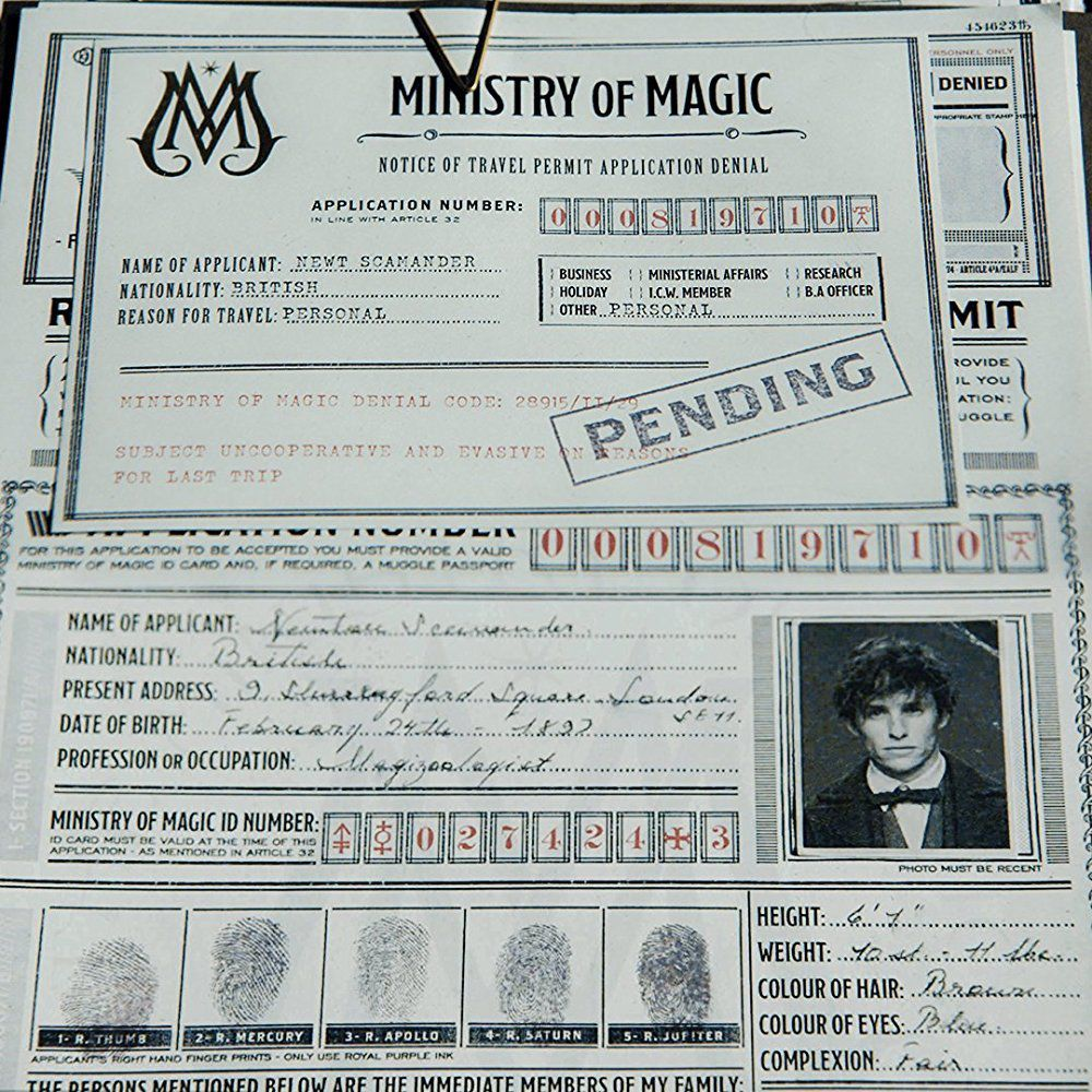 Eddie Redmayne (Newt Scamander) - Magic Passport