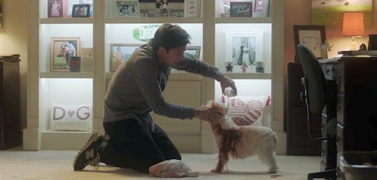 Jason Bateman - save the dog