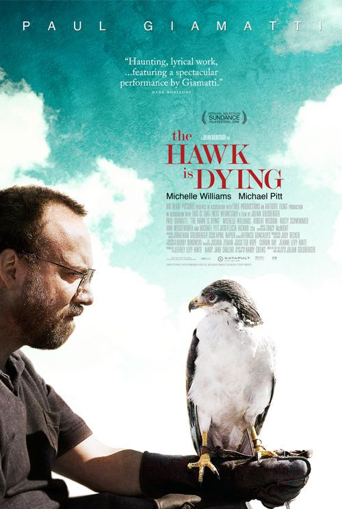 Hawk is Dying