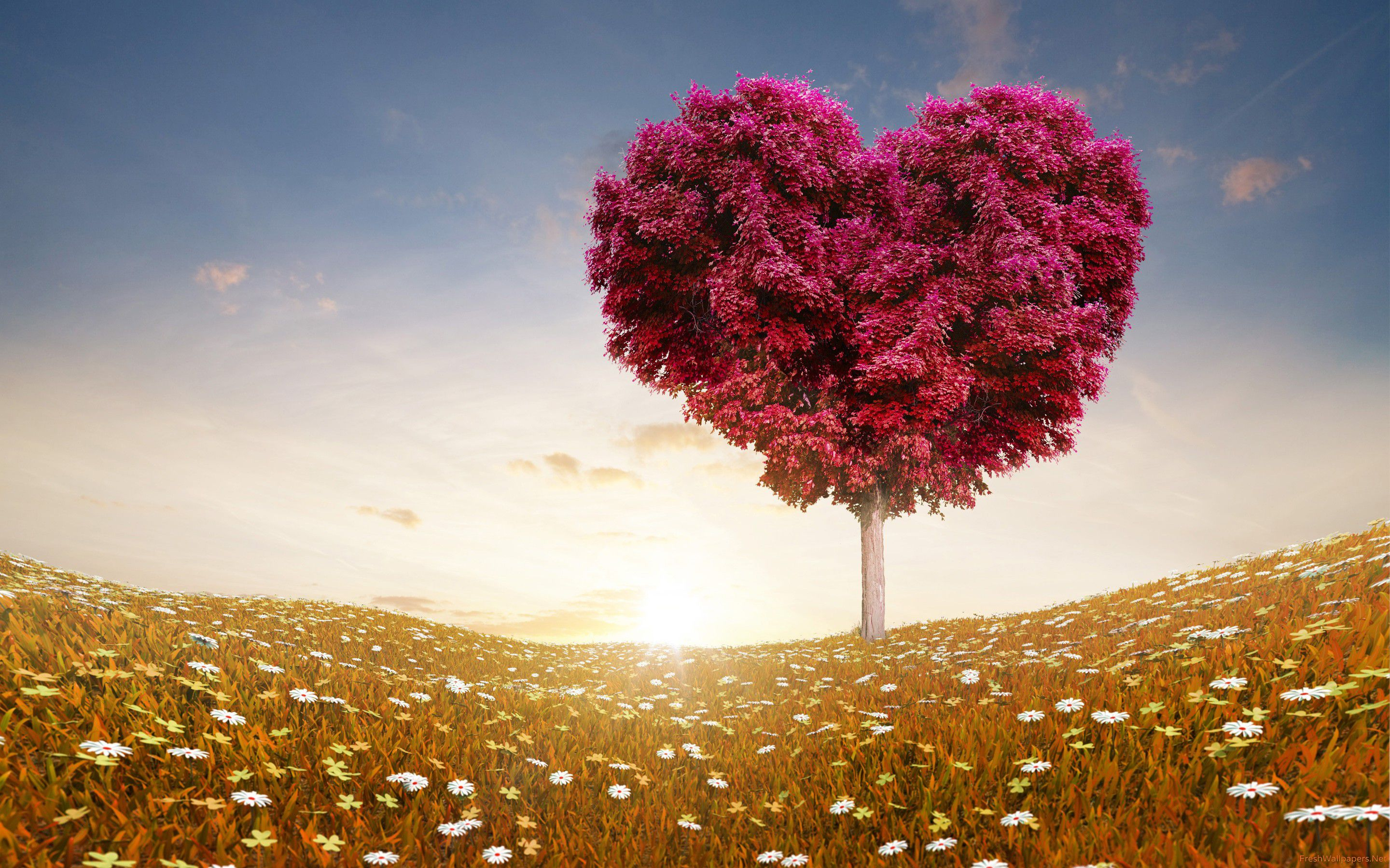 Best 20 Fantasy - Migliori Film - I Love - red tree heart cuore coeur