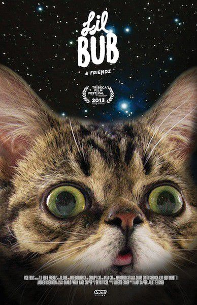 Lil Bub and Friendz - film poster