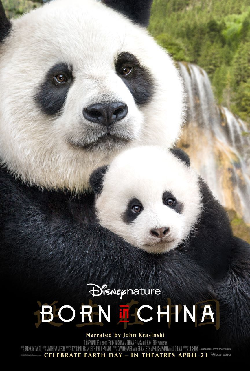 Born in China - Nato in Cina - documentario - Panda - poster