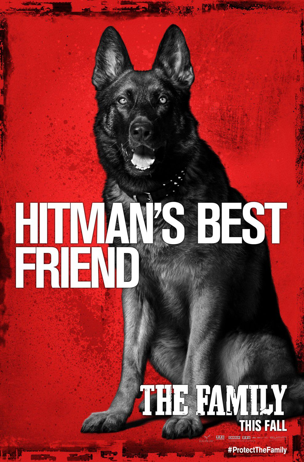 Cose nostre - Malavita - the Family - Dog - Cane - hitman's best friend - il miglior amico dell'assassino poster