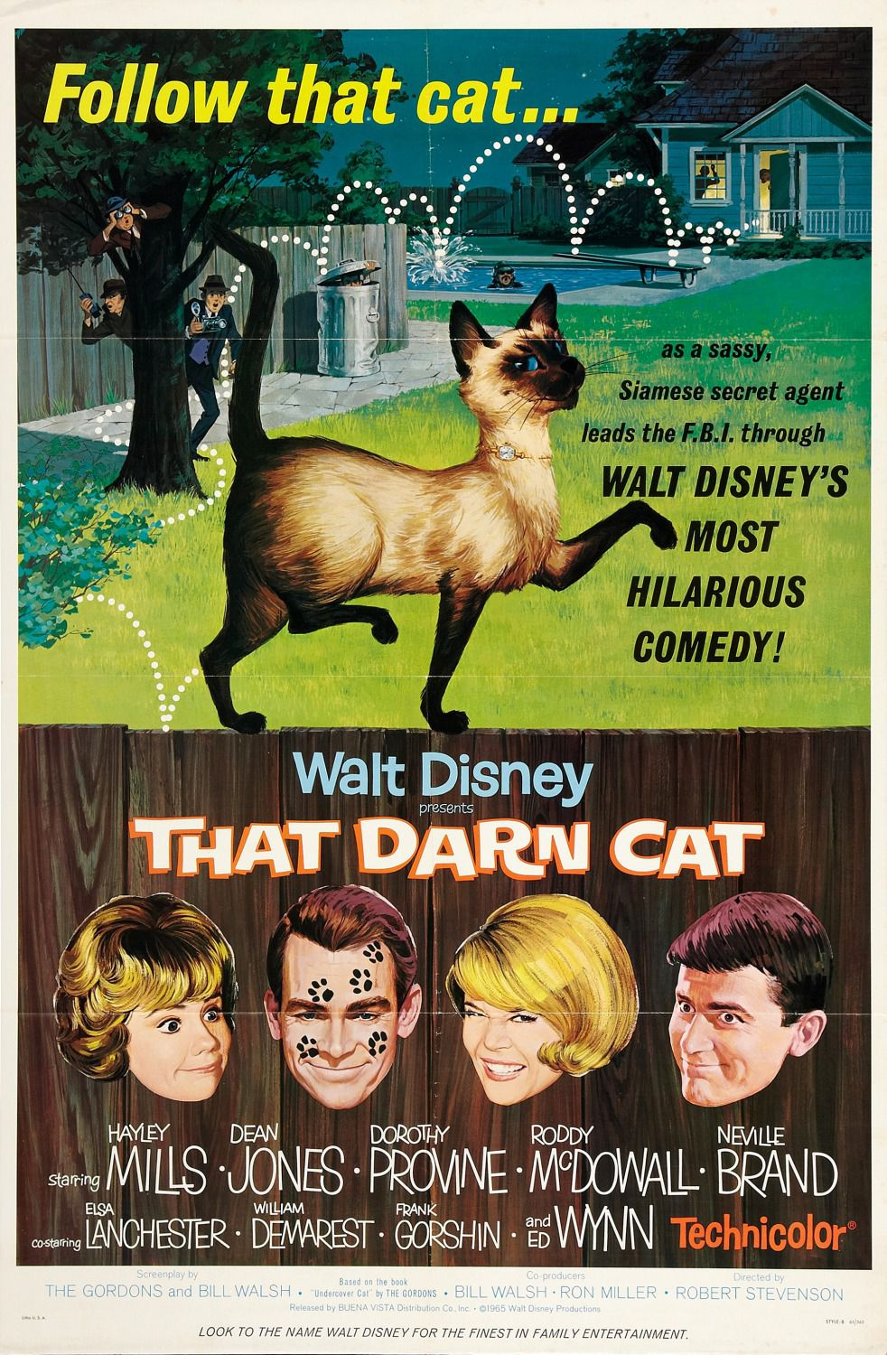 Disney Film : That Darn Cat - FBI operazione Gatto ... follow that Cat as a sassy, Siamese secret agent leads the FBI through Walt Disny's most hilarious commedy - Hayley Mills - Dean Jones - Dorothy Provine - Roddy McDowall - Neville Brand