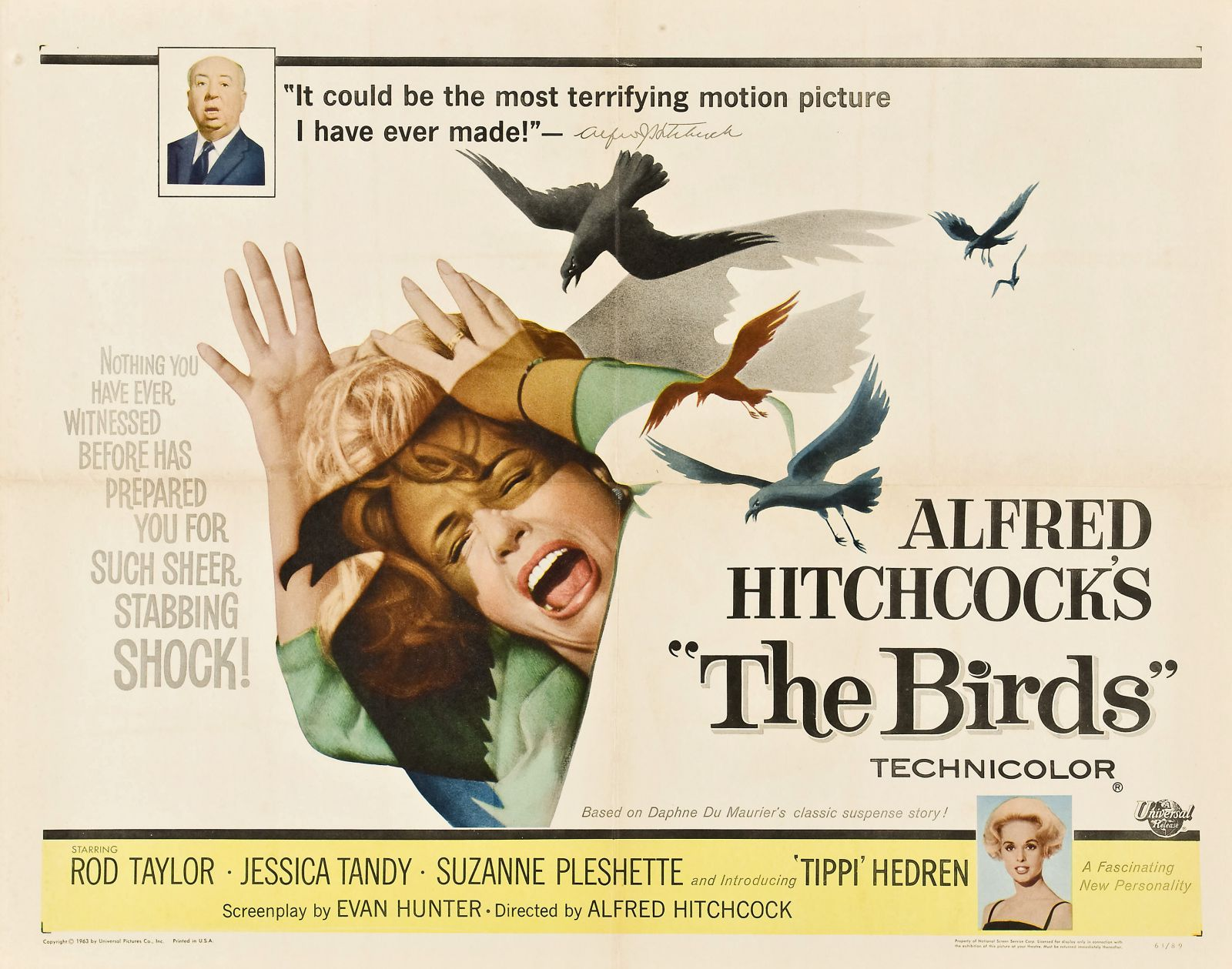 The Birds - Alfred Hitchcock 1963 - old classic cult film poster