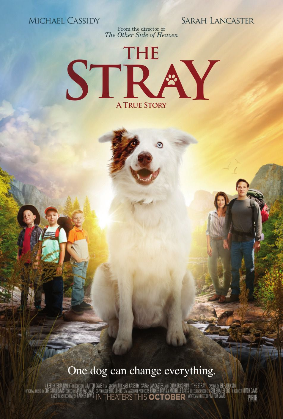 The Stray - film poster - Michael Cassidy - Sarah Lancaster ... one Dog can change everything