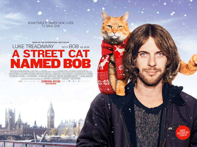 A Street Cat named Bob - real story - storia vera 2017