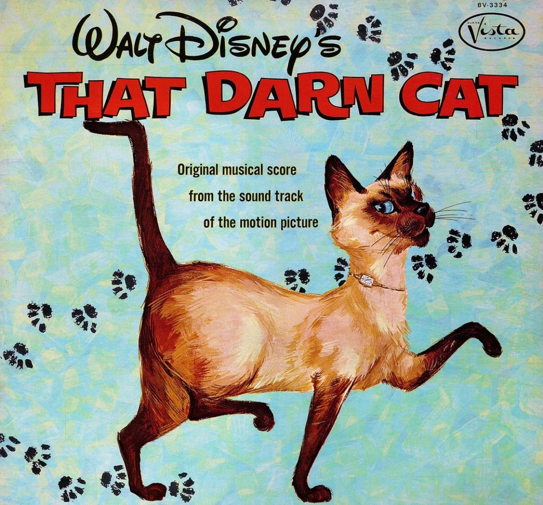 Disney Film : That Darn Cat - FBI operazione Gatto