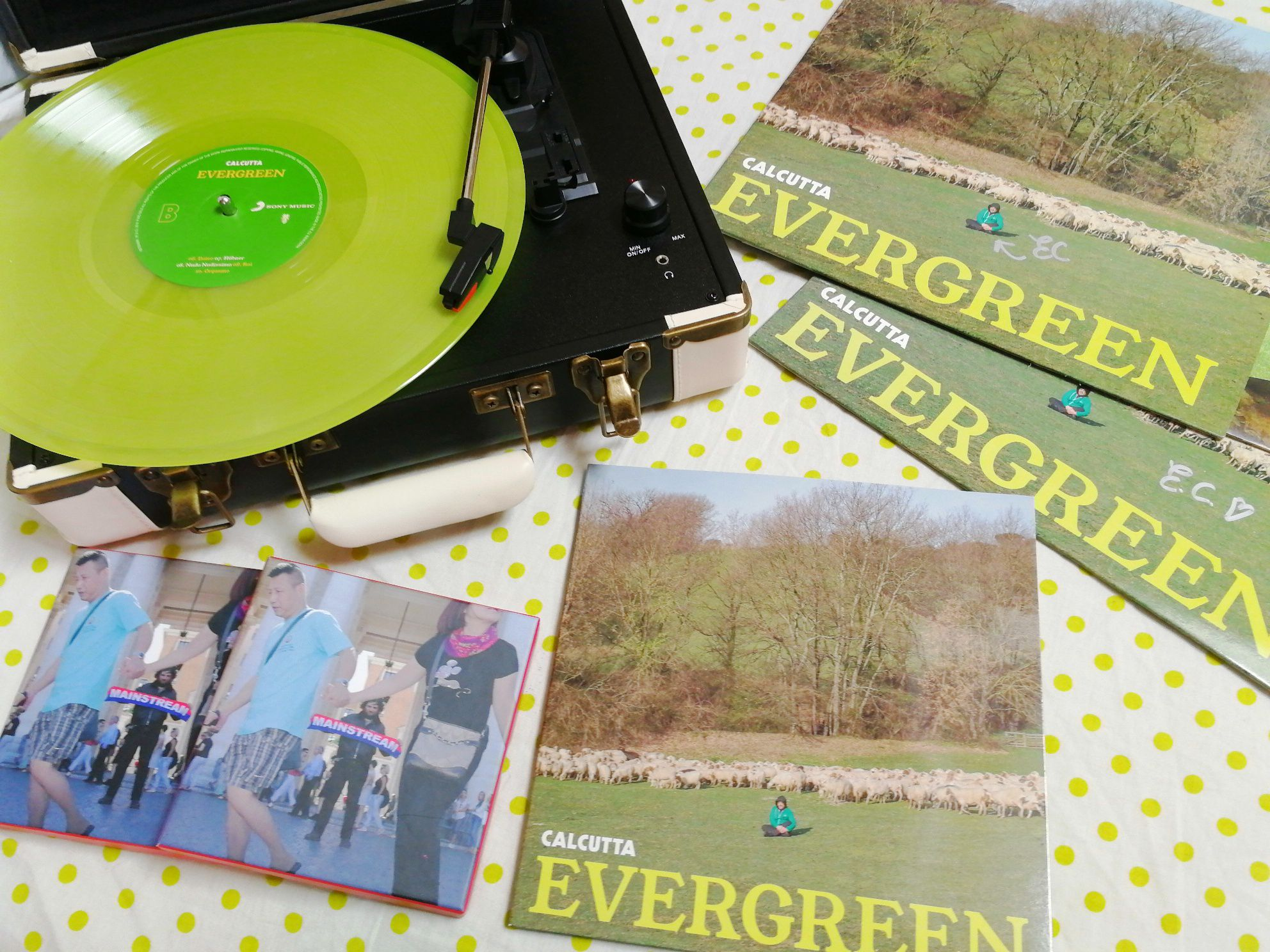 Calcutta - Evergreen album - indie italiana mausica 2018 - Pesto - green disk LP disco verde