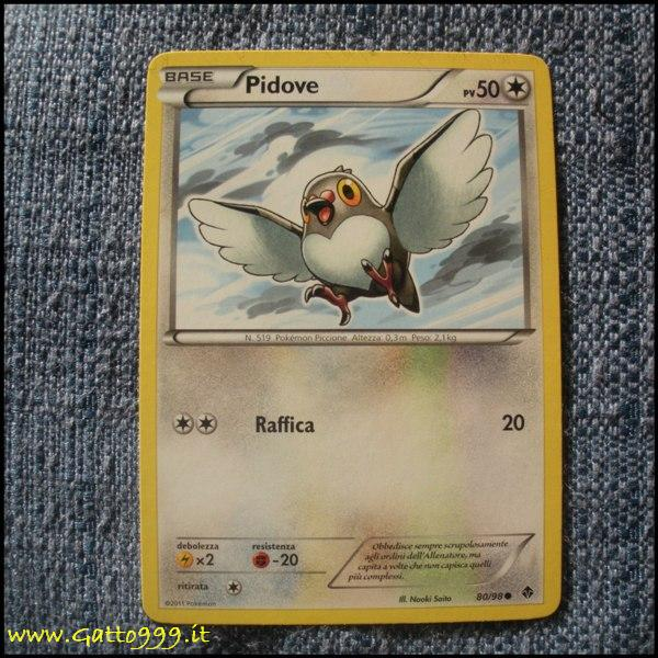 Pokemon Cards - Carte - Pidove